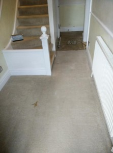 My Hallway - Before Tiling